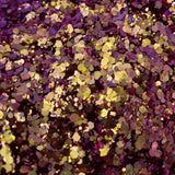 Loose Glitter Sales: DANGEROUS DRAGON Chunky Chameleon Glitter Mix - shifting purple, gold light green, silver