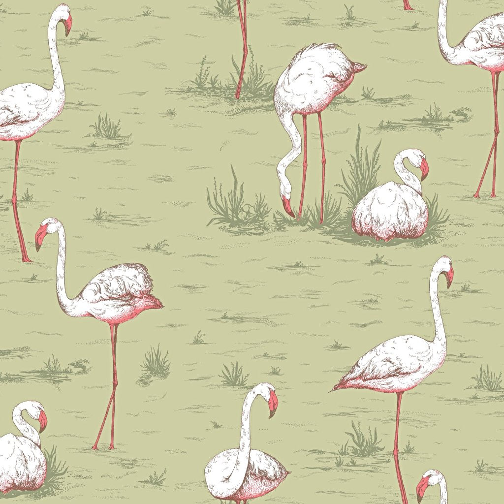 FLAMINGOS 10 COLOURS