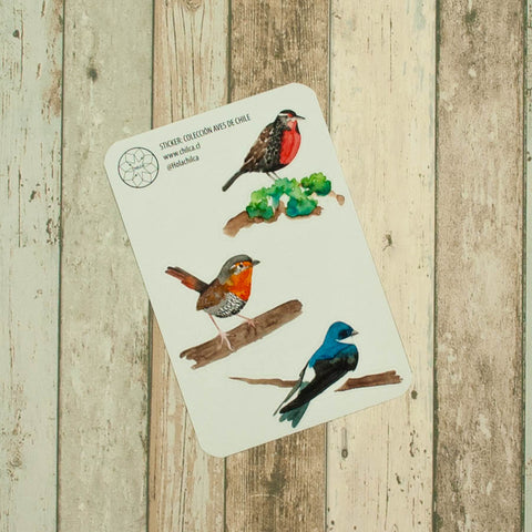 Sticker Aves de Chile I
