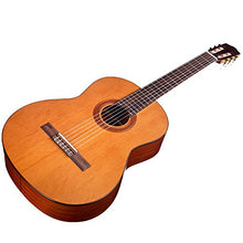 Cordoba C5 Nylon String Guitar with Deluxe Gig Bag, String Set, and Clip-on Tuner
