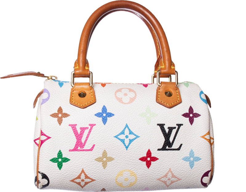 Louis Vuitton Multicolor Mini Speedy Bag