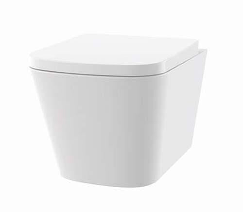 The White Space Anon Rimless Wall Hung Wc Pan ANW2