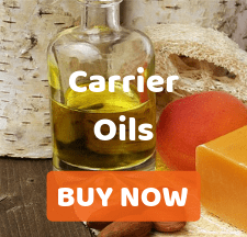 Buy 100% Organic and Natural Carrier Oil in Bulk or Wholesale at Discounted Prices