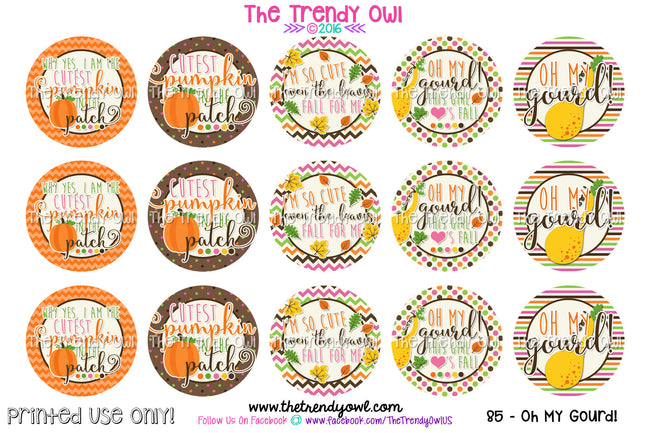 "Cutest Pumpkin - ""Oh My Gourd!"" - Fall Inspired - 1"" Bottle Cap Images - INSTANT DOWNLOAD"