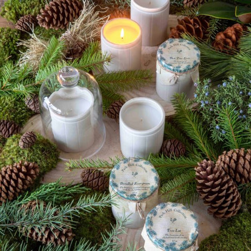 Park Hill Collection - Tree Lot Natural Crockery Candle