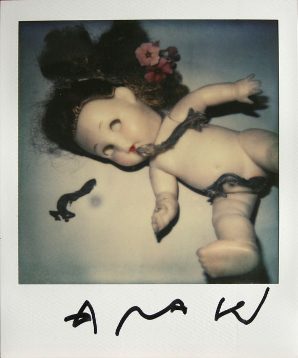 Nobuyoshi Araki - still life - original work (with COA)