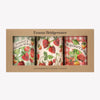 Vegetable Garden Strawberries Set of 3 Round Tin Caddies Boxed