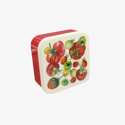 Vegetable Garden Set of 4 Snack Boxes