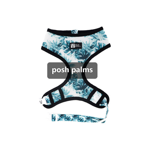 posh palms collection