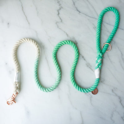 Cotton Rope Leash - Mint Ombre