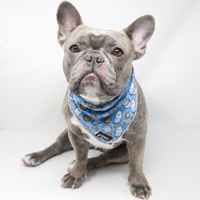 Cooling Dog Bandana - Milky Way