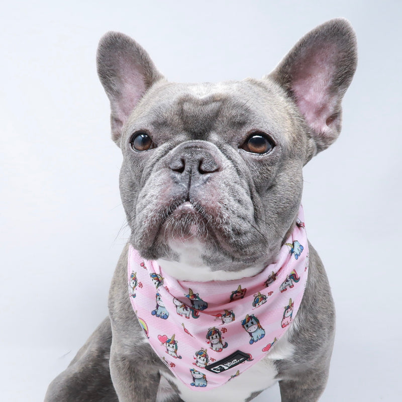 Cooling Dog Bandana - Hearts & Horns