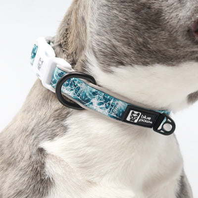 Dog Collar - Posh Palms