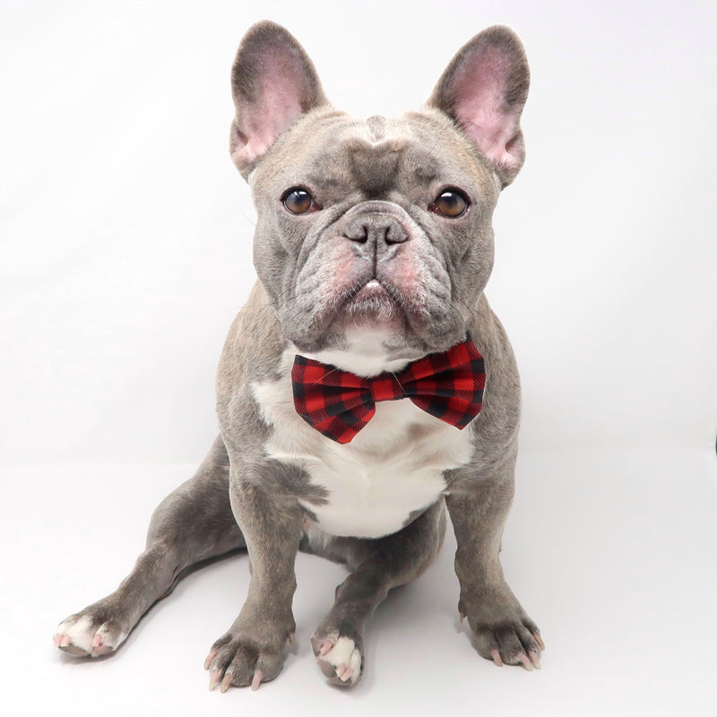 Dog Bow Tie - Ruffalo Plaid