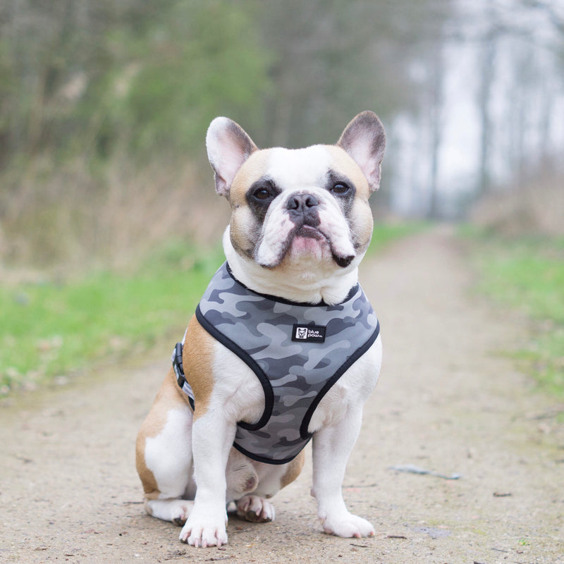 Reversible Dog Harness - Combat Camo
