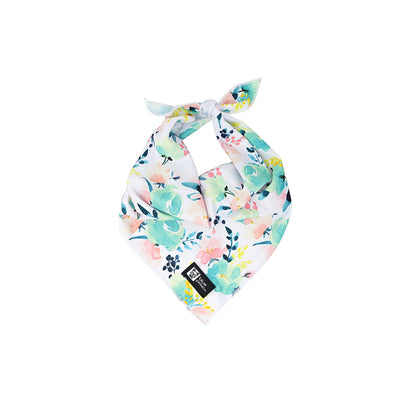 Dog Bandana - Sweet & Simple - Blue Paw Co.