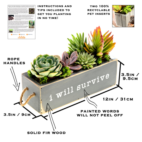 Rustic Windowsill Planter / Modern Farmhouse Windowsill Herb Planter (Gray)