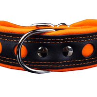 Real Leather Soft Leather Padded Dog Collar Reflective Black/Orange