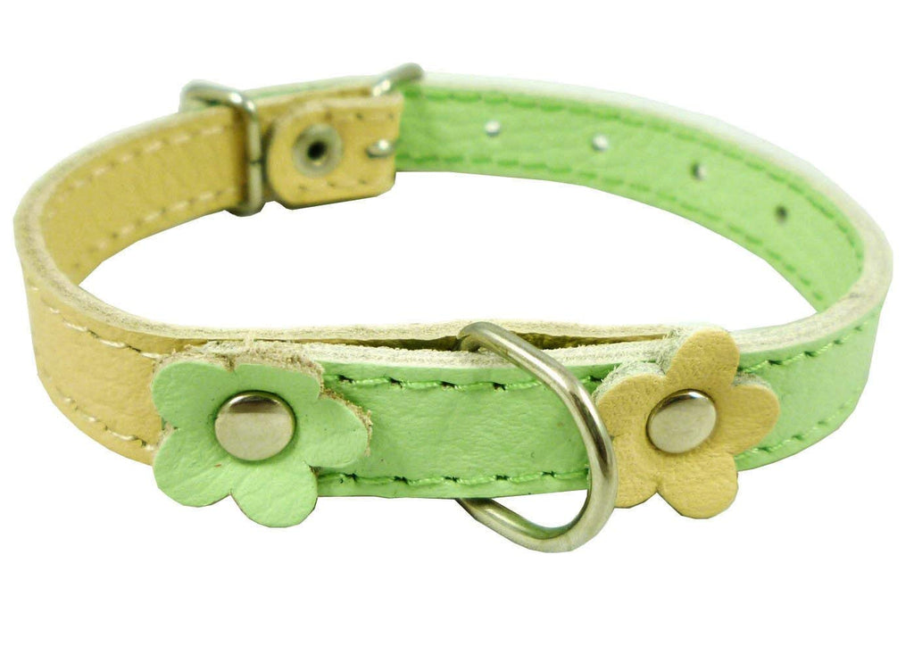 "Genuine Leather Designer Dog Collar Daisy Studs. 11""x1/2"" Wide. Fits 8""-10"" Neck Yorkshire, Puppies"