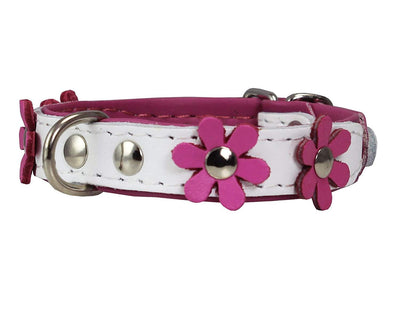 Real Leather Daisy Flowers Dog Collar White/Pink