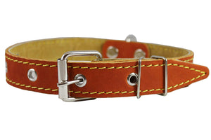 "Genuine Leather Dog Collar 13""-19.5"" Neck Size, 1"" Wide, Medium to Large"