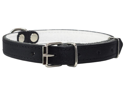 Dogs My Love Genuine Leather Felt Padded Dog Collar Black