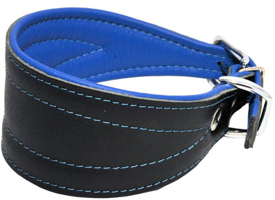 Real Leather Extra Wide Padded Tapered Dog Collar Glossy Black Greyhound Lurcher Dachshund Blue