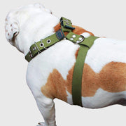 "Cotton Web Dog Harness Large. Fits Girth 29""-34.5"". 1.5"" Wide Straps, Rottweiler, Doberman, Boxer"