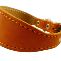 "Orange Real Leather Tapered Dog Collar 1,5"" Wide, Fits 8.5""-10.5"" Neck, Small, Dachshund"