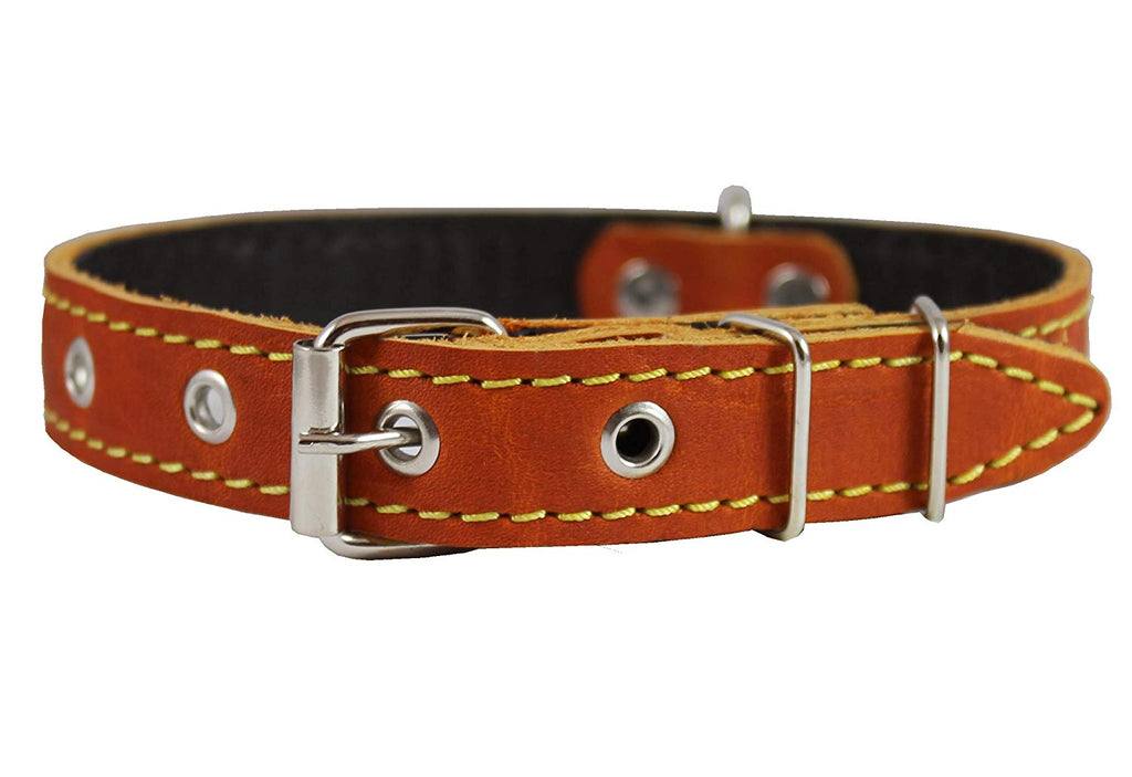 "Real Leather Dog Collar 11""-15"" Neck Size, 3/4"" Wide, Medium Breeds"