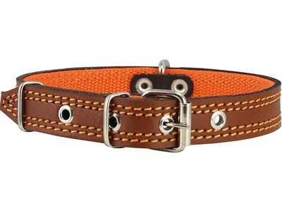 Genuine Leather Dog Collar Padded Brown 3 Sizes