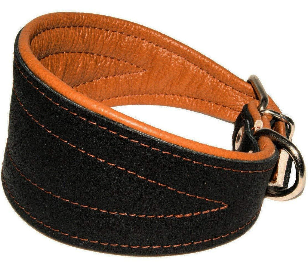 Real Leather Extra Wide Padded Tapered Dog Collar Glossy Black Lurcher Whippet Dachshund Toffee