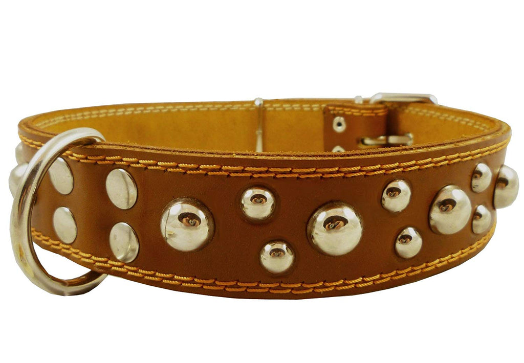 "Genuine 1.6"" Wide Leather Studded Dog Collar Tan Fits 19""-24"" Neck Large Breeds Cane Corso, Bulldog"