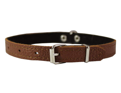 Dogs My Love Genuine Leather Felt Padded Dog Collar X-Small 11