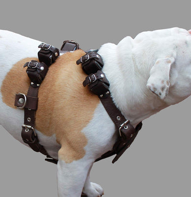 6 lbs Genuine Leather Weighted Pulling Dog Harness for Exercise and Train Fits 28