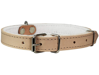 Dogs My Love Genuine Leather Felt Padded Dog Collar Beige