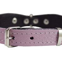 "Genuine leather Designer Dog Collar 11""x3/4"" with Studs, Daisy, and Rhinestone"