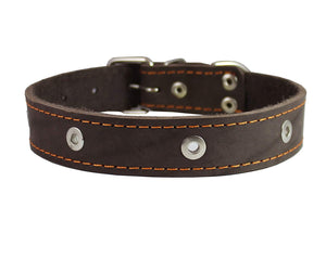 "Genuine Leather Studded Dog Collar, Brown, 1.5"" Wide. Fits 16""-20"" Neck Size Amstaff"