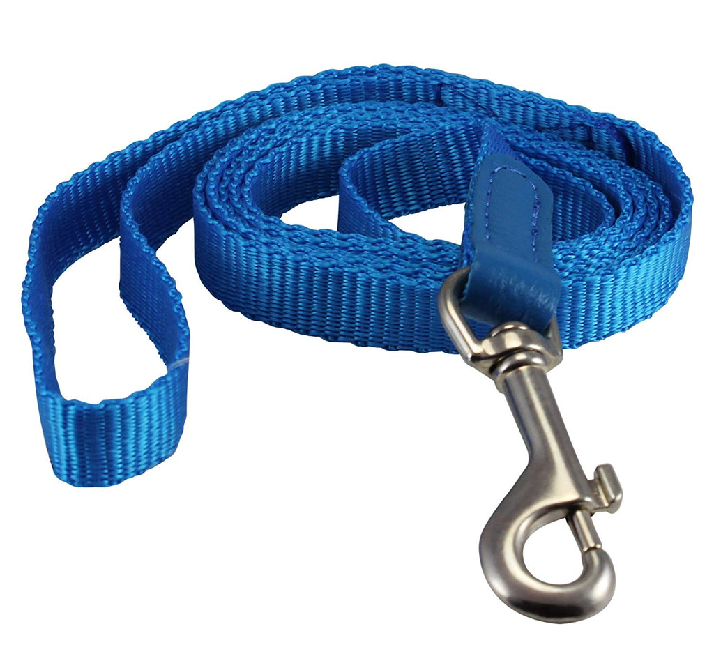 "Dog Leash 1/2"" Wide Nylon 5ft Length with Leather Enforced Snap Blue Small"