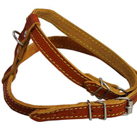 "Dogs My Love Real Leather Feline Harness, 12""-15"" Chest size, 3/8"" Wide, Small to Medium Cats"