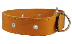 "Genuine Leather Studded Dog Collar Tan 1.75"" Wide. Fits 18.5""-22"" Neck. For Large Breeds"
