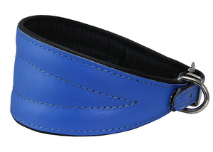 Dogs My Love Real Leather Extra Wide Padded Tapered Dog Collar Blue
