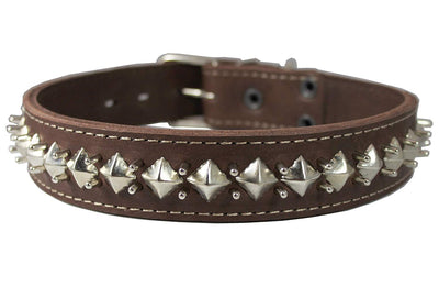 Genuine Leather Spiked Studded Dog Collar 1.5