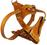 "Real Leather Dog Harness, 24.5""-28"" Chest size, 3/4"" Wide, Brittany Spaniel"