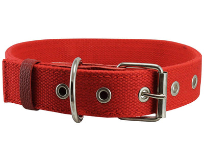 Heavy Duty Cotton Web Dog Collar 1.5