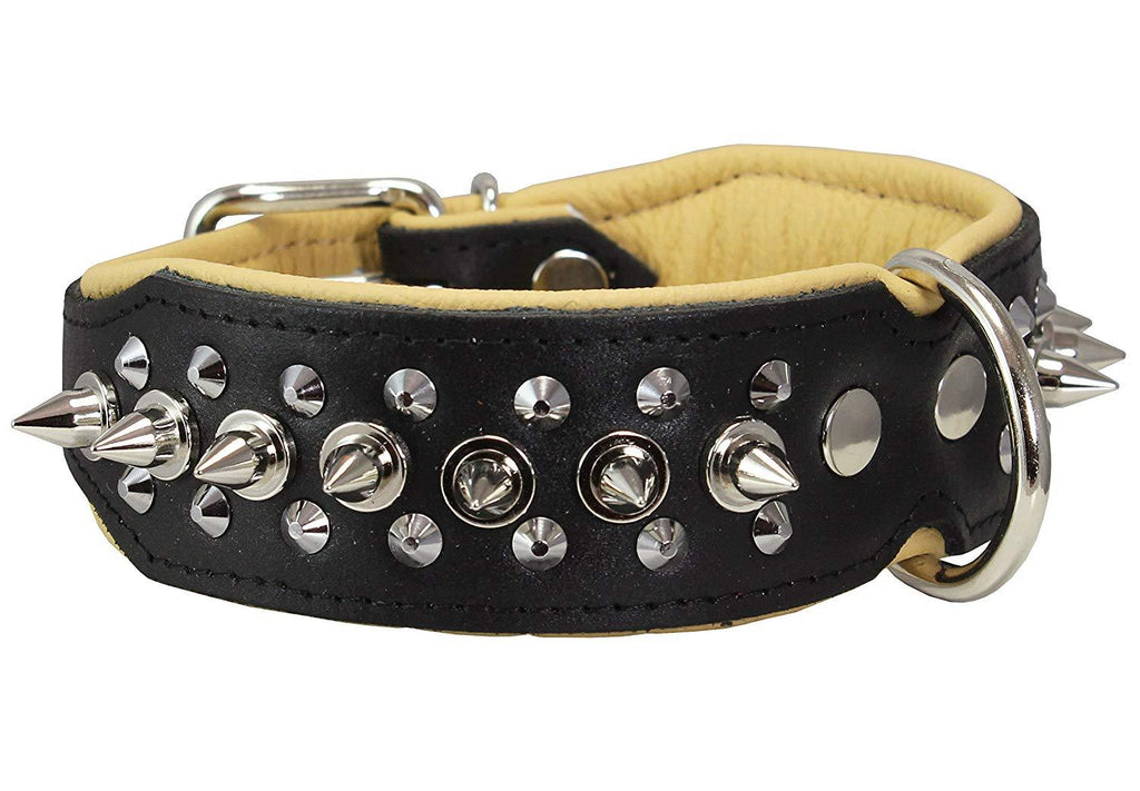 "Dogs My love Spiked Studded Genuine Leather Dog Collar 1.75"" Wide Black/Beige"