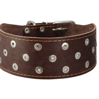 "Dogs My Love 3"" Extra Wide Genuine Leather Studded Brown Leather Collar 19""-23"" Neck Large Breeds"