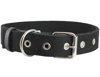 Black Heavy Duty Cotton Web Dog Collar 1.5