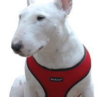 Dogs My Love Soft Mesh Walking Harness for Dogs and Puppies 6 sizes Red