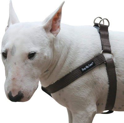Cotton Web Adjustable Dog Step-in Harness 4 Sizes Brown